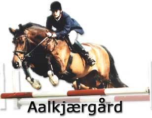 vv vv vv heste dk
